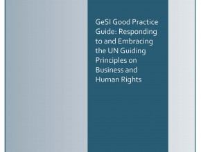 GeSI UN Guiding Principles Good Practice Guide 2017